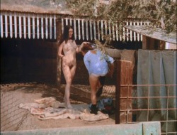 Country Cuzzins (Better Quality) (1970) screenshot 2