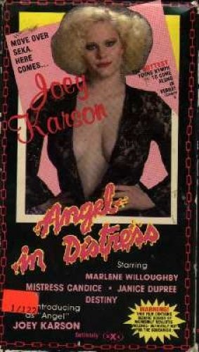 Angel in Distress (1982) cover