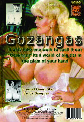Gozangas (1970) cover
