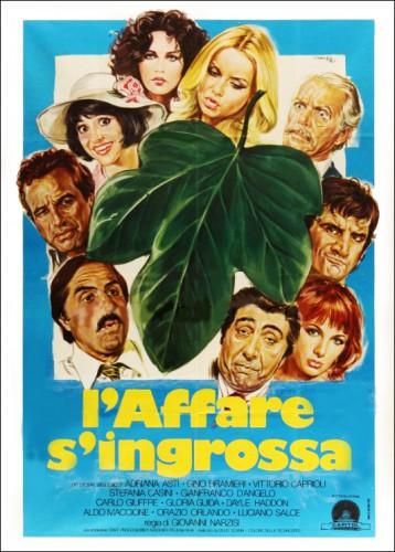 Maschio latino cercasi (1977) cover