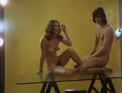 Liebe zwischen Tur und Angel - Vertreterinnen-Report (Better Quality) (1973) screenshot 2