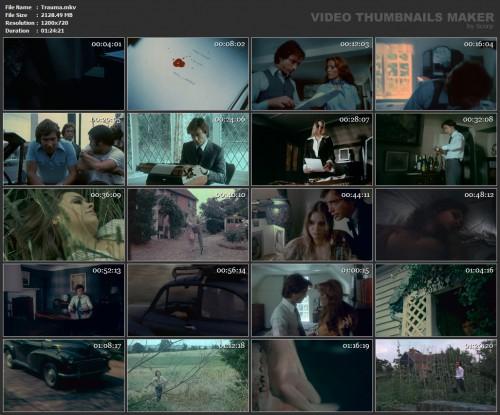 Trauma1 500x415 - Trauma (1976)