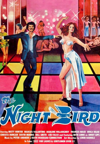 The Night Bird (1977) cover